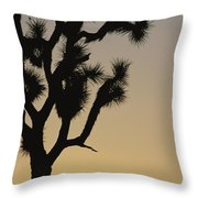 Silhouetted Joshua Tree In Antelope Throw Pillow
