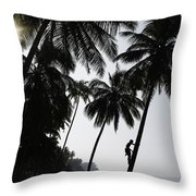 Silhouetted Man Climbing A Palm Tree To Throw Pillow