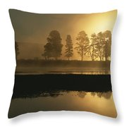Silhouetted Trees Along The Yellowstone Throw Pillow