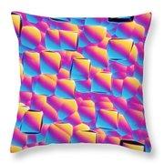 Silicon Wafer Throw Pillow