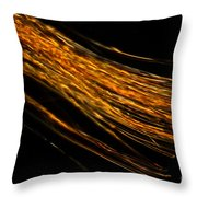Silk Fiber Throw Pillow