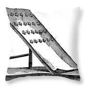 Silk: Moth Catching Throw Pillow