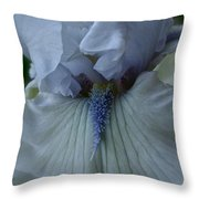 Silky Iris Throw Pillow