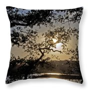 Silky Sunset Throw Pillow