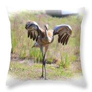 Silly Sandhill Crane Chick Throw Pillow
