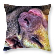 Silly Sleep Throw Pillow