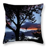 Silohuette Of The Southwest Throw Pillow