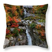 Silver Cascades Surrounded By Colors Throw Pillow