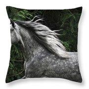 Silver Dapple Throw Pillow