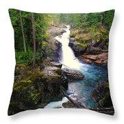 Silver Falls Full View  Throw Pillow