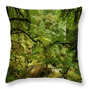 Silver Falls Rainforest Throw Pillow