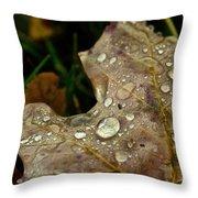 Silver Maple Rain Throw Pillow