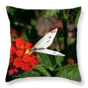 Silver Moth Throw Pillow