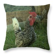 Silver Seabright Rooster And Hen Throw Pillow