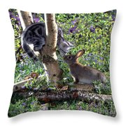 Silver Tabby And Wild Rabbit Throw Pillow