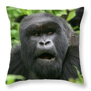 Silverback Portrait Throw Pillow