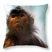 Silvered Langur Throw Pillow
