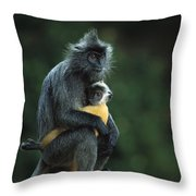 Silvered Leaf Monkey And Baby Throw Pillow