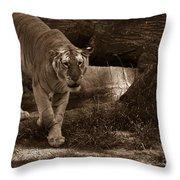 Simba 1 Throw Pillow