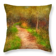 Simple Pathways Throw Pillow