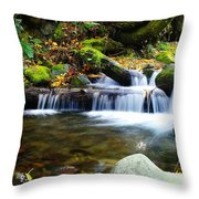Simple Pools  Throw Pillow
