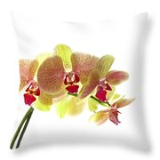 Simplified Orchids I Throw Pillow