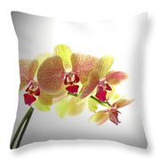 Simplified Orchids II Throw Pillow