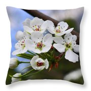 Simply Spring  Throw Pillow