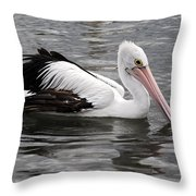 Single Australian Pelican Throw Pillow