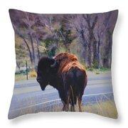 Single Buffalo In Yellowstone Np Throw Pillow