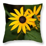 Single Daisy Throw Pillow