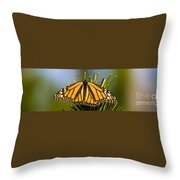 Single Monarch Butterfly Throw Pillow