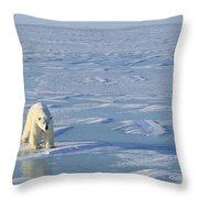 Single Polar Bear Throw Pillow