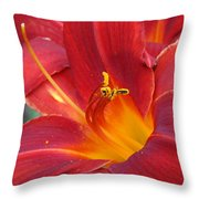 Single Red Lily 2 Throw Pillow