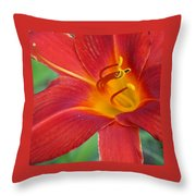 Single Red Lily Closeup Throw Pillow