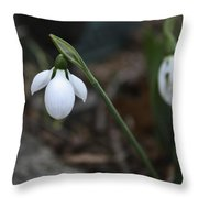 Single Snowdrop Squared 1 Throw Pillow