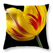 Single Yellow And Red Tulip Throw Pillow