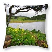 Sintra Landscape Throw Pillow