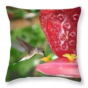 Hummingbird Sipping Throw Pillow