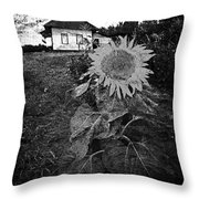 Sips Of Soil  Throw Pillow