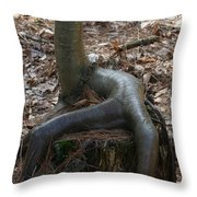 Sit Down  Throw Pillow