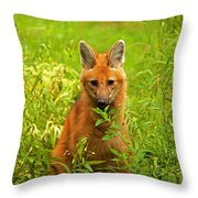 Sitting Wolf Throw Pillow