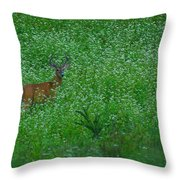 Six Point Deer In Wildflowers Throw Pillow