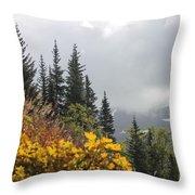 Skagway Alaska 2 Throw Pillow
