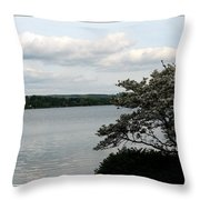 Skaneateles Lake In Ny Finger Lakes Water Color Effect Throw Pillow