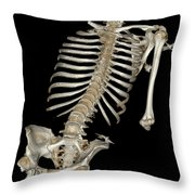 Skeletal Reconstruction Throw Pillow