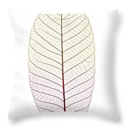Skeleton Leaf Throw Pillow by Elena Elisseeva