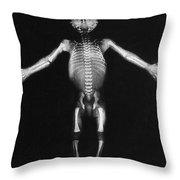 Skeleton Of A Baby Throw Pillow