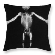 Skeleton Of A Baby Throw Pillow