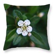 Skull Ghost Flower 2 Throw Pillow